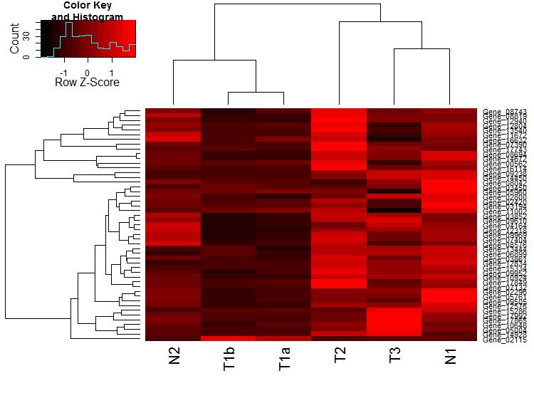 heatmap_2_black_red