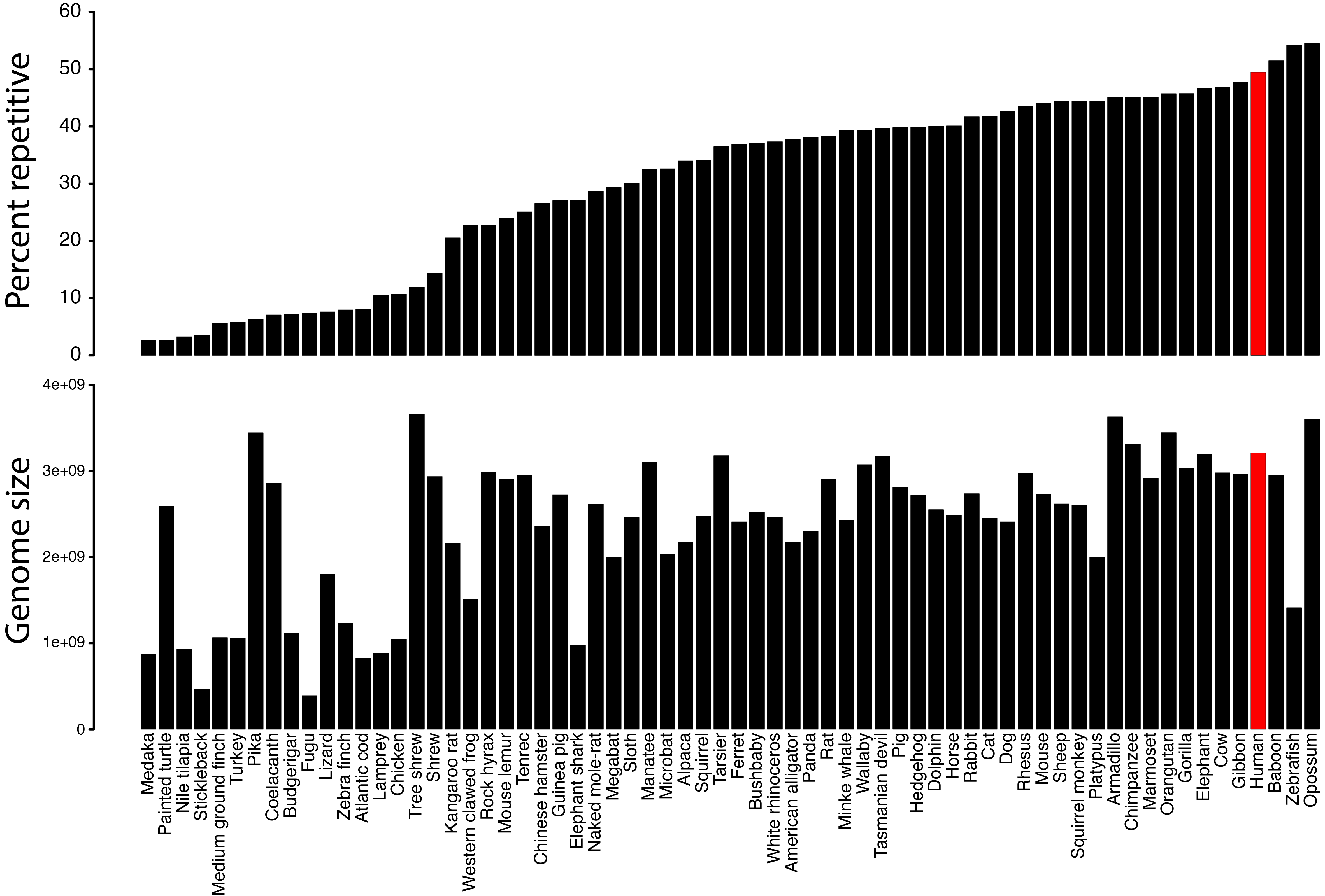 percent_and_genome_size