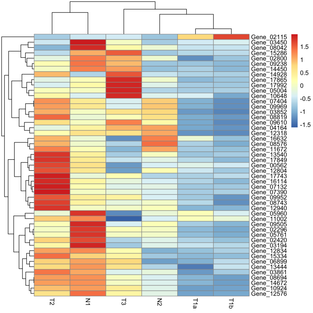 Making a heatmap in R with the pheatmap package - Dave Tang's blog